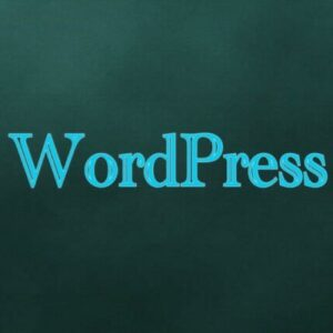 WordPressやプログラミングで、副業やフリーランスは可能か?